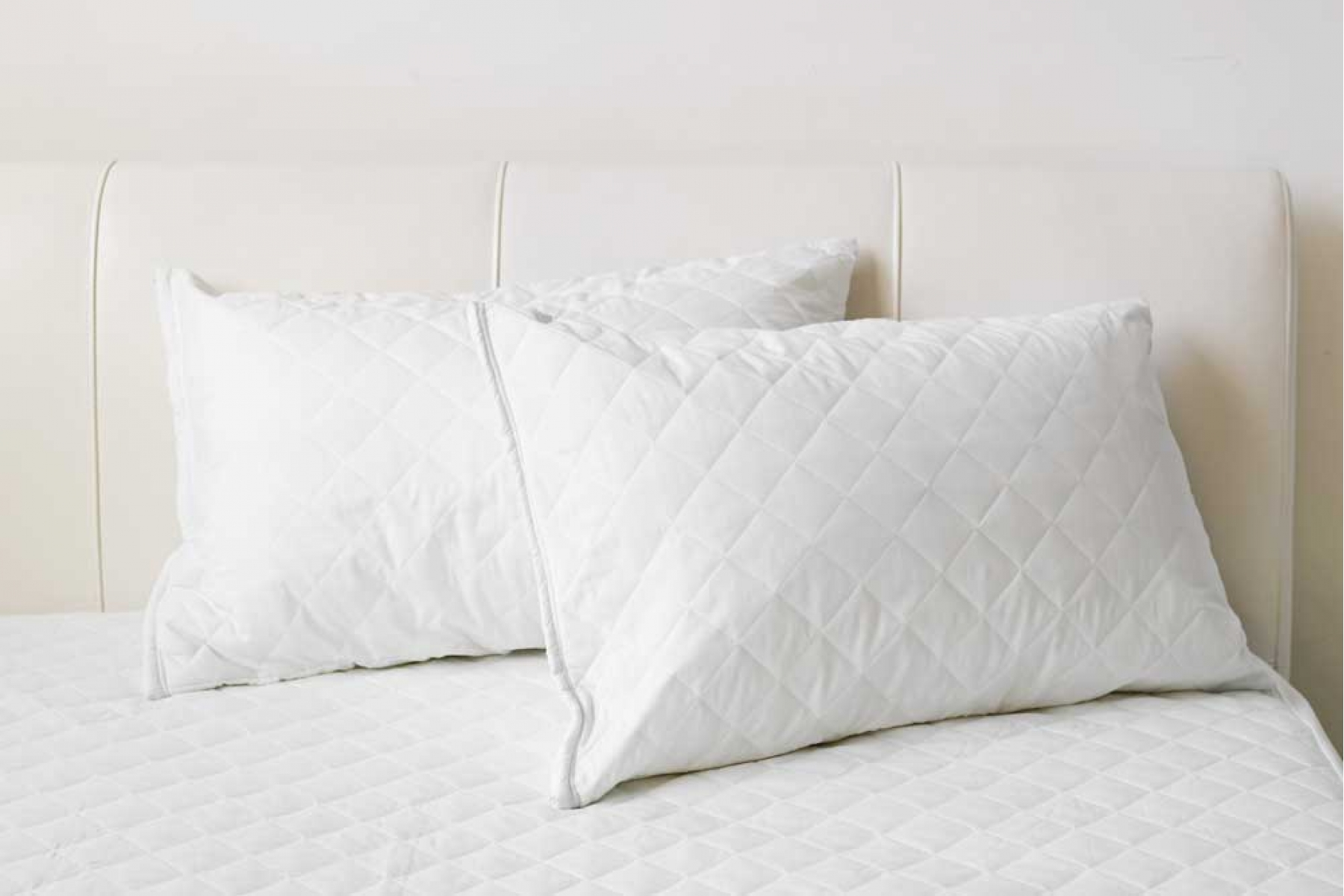 Organic Cotton Mattress Pad Queen Pillow Protectors Related Keywords & Suggestions - Pillow Protectors ...