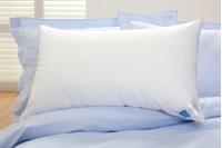 Standard Pillow